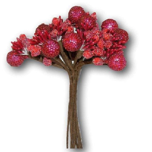 Dekorační svazek červeného ovoce (12ks) na scrapbooking, do alba, na bloky, přáníčka a jiné dekorace STAMPERIA